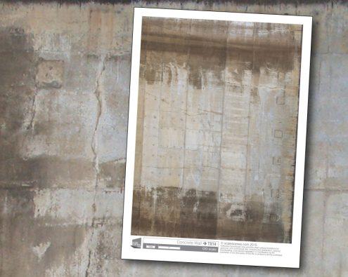 Scalescenes Concrete Wall